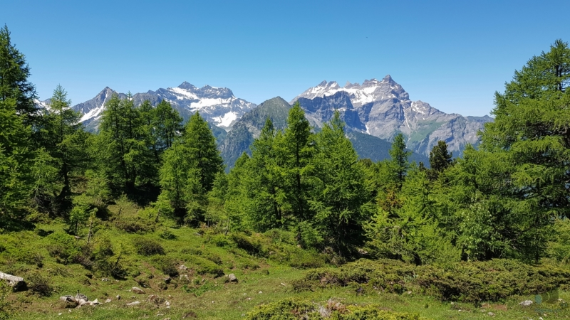 de alpage de l'Au d'Alesse > Portail de Fully