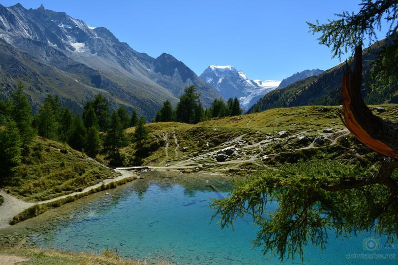 Lac Bleu - Arolla